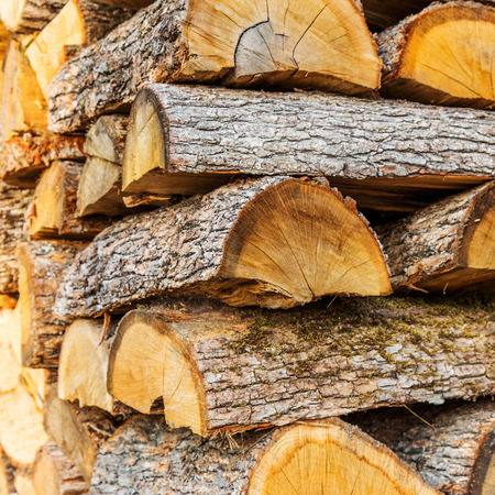 in the ranks: the firewood combined in two ranks for a furnace kindling Stock Photo