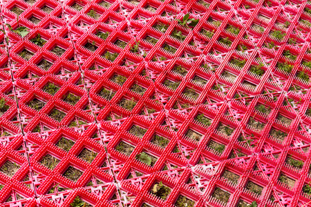 sprouted: Background red plastic road grid with sprouted green grass