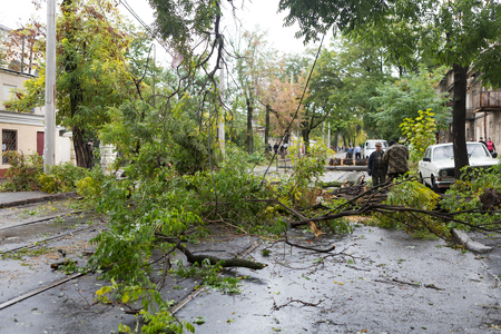 doomed: Odessa, Ukraine - October 12, 2016: Hurricane CHRISTIE. Heavy rain and gale - force gusts of wind caused accident - old tree during storm fell on car and destroyed house. Strong storm with rain Editorial