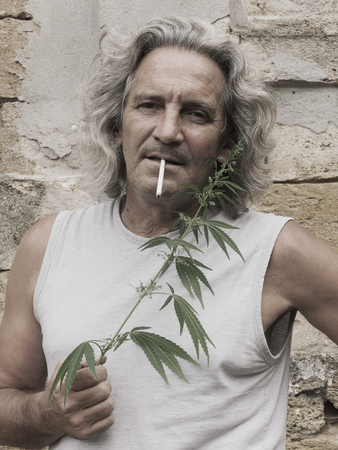 stoned: Smoking gray-haired man is standing at wall of an old abandoned estate and holds branch of cannabis in his hand. Vintage effect.
