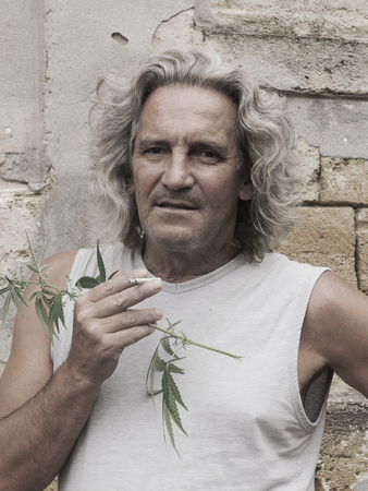 Smoking gray-haired man is standing at wall of an old abandoned estate and holds branch of cannabis in his hand. Vintage effect.