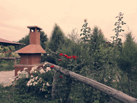 outdoor fireplace: Barbecue in summer garden among trees and beautiful blooming red, pink and white roses.
