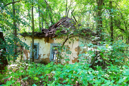 Abandoned city Chernobyl radioactive contamination. Overgrown trees and plants of streets of towns and villages in Chernobyl zone. People left city during disaster. Catastrophe at nuclear power plant. Ghost town Pripyat Stock Photo