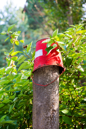 nuclear bomb: Red iron bucket hanging on concrete pillar. Old rusty metal signs in the Chernobyl zone. Radioactive area. Warning about dangerous area