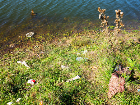 Empty plastic and glass bottles, paper and other garbage thrown by people on the lake. Pollution of the environment.