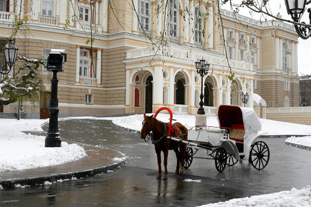 Carriage with horse on winter day.