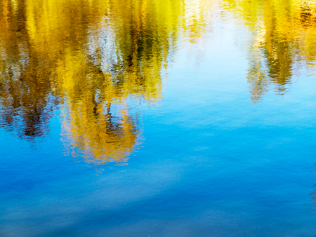 Bright autumn water background reflecting yellow and green trees in the water. Clear water. As bright background for any your art project. Stock Photo