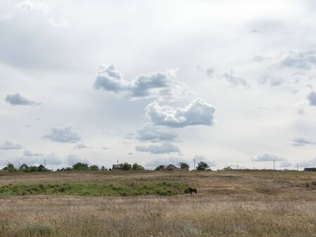 Rural landscape of blue sky in white clouds in the steppe near Odessa, hot summer day