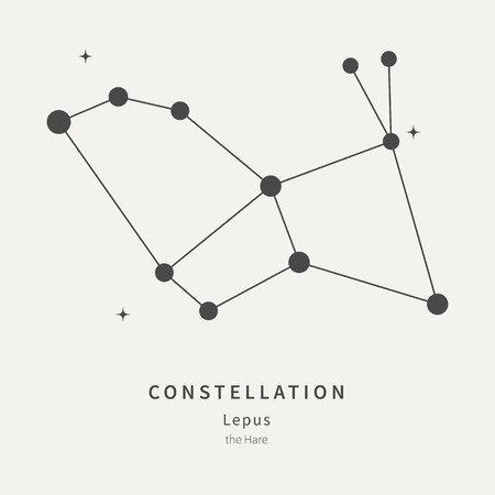 The Constellation Of Lepus. The Hare - linear icon. Vector illustration of the concept of astronomy Vettoriali