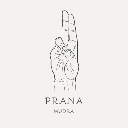 Prana mudra - gesture in yoga fingers. Symbol in Buddhism or Hinduism concept. Yoga technique for increase vitality and activate the muladhara chakra. Vector illustration isolated on white background
