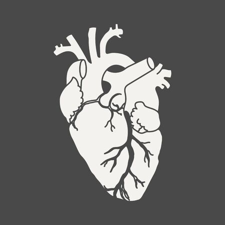 Anatomical human heart - white silhouette isolated on black background. Hand drawn sketch. Vector illustration
