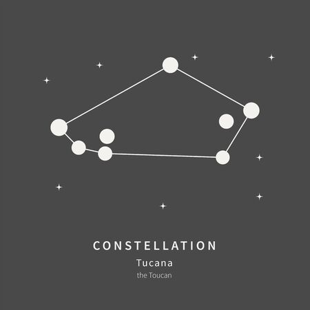 The Constellation of the Toucan in the night starry sky. Vector illustration of the concept of astronomy 일러스트