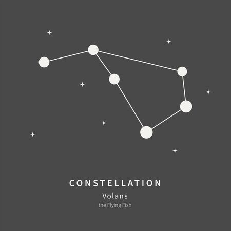 The Constellation Of Lyra. The Lyre - linear icon. Vector illustration of the concept of astronomy