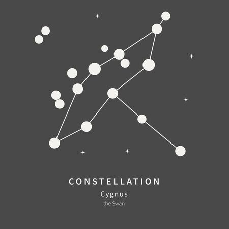 The Constellation Of Cygnus. The Swan - linear icon. Vector illustration of the concept of astronomy.