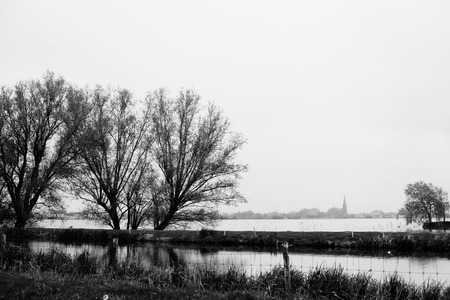 plassen: Two trees on Lake Langeraarsche Plassen with church on background, Nehterlands Stock Photo