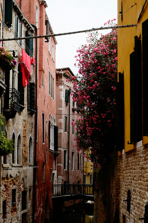 Beautiful colorful street with flowers and canal in Venice, Italy.