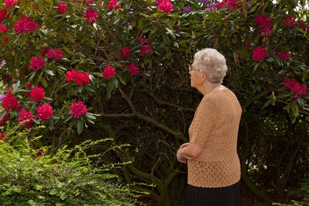 An old solitary woman is looking at a flower