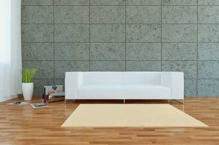Modern interior with sofa