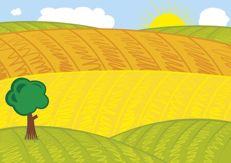 rolling landscape: Vineyard vector illustration Illustration
