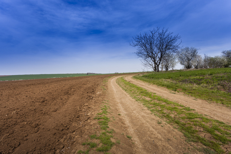 non cultivated: Ploughed field under deep blue sky with clouds Stock Photo