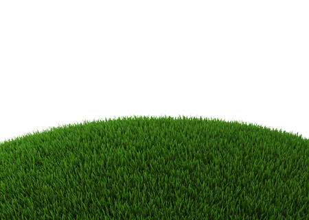 Green hill of grass - isolated on white