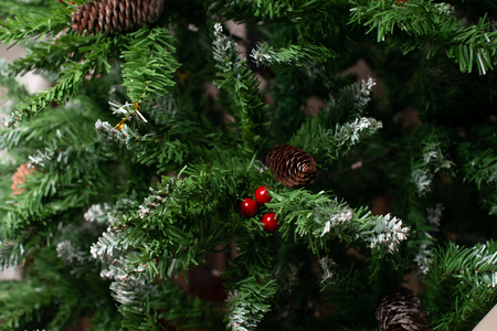 Christmas tree branch with pine, Happy new year background, new year background, new year 2020, Christmas tree
