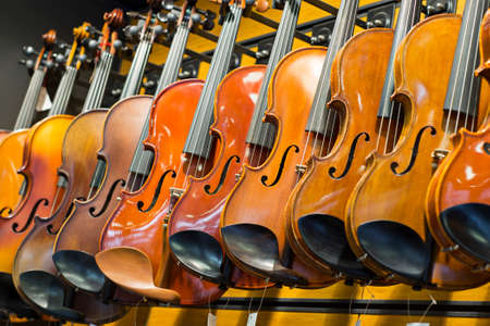 Handmade violins in the store