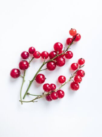 Close-up of redcurrant sprigs on white background. Top view