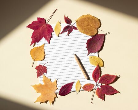 Empty lined page with pencil framed by colored autumn leaves. Bright sunlight and shadows at edges of frame. Beige background, top view, copy space
