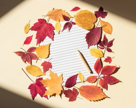 Empty lined page with pencil framed by colorful autumn leaves. Bright sunlight and shadows at edges of frame. Beige background, top view, copy space