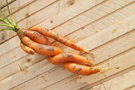 Close-up of unusual carrot root on light wooden background. Copyspace 版權商用圖片