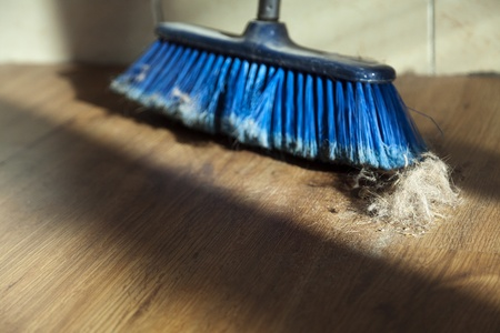 Window sunlight gives a romantic atmosphere to a blue broom surrounded by dust and a canine originated fur ball. Shallow depth of field. Stock Photo