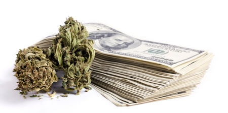 Marijuna buds and a large stack of 100 US dollar money notes isolated on white background.