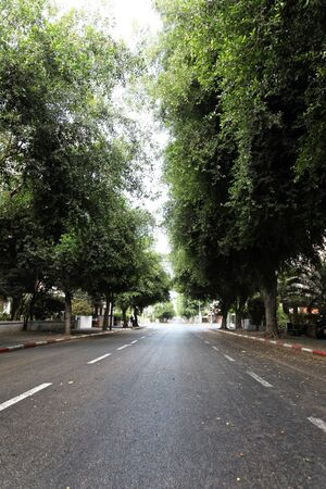 atonement: Early Yom-Kippur morning in the empty Arlozorov street in Tel-Aviv, Israel. Yom Kippur is a legal holiday in the modern state of Israel. There are no radio or television broadcasts, airports are shut down, there is no public transportation, and all shops  Stock Photo