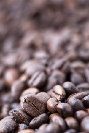 A shallow depth-of-field image of coffee beans, creating bokeh effect in the background. While a single coffee bean receives all the attention due to the selective focus. photo