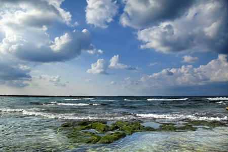 dramatically: Algae covered rocks on the beach in Tel-Aviv at a beautiful winter day with dramatically clouded sky.