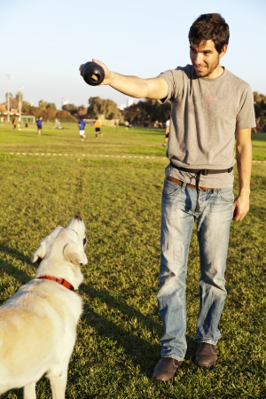 fetch: A mixed Labrador female dog looking up at the chew toy her trainer is holding. Stock Photo