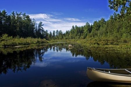 provincial: Landscape of canoe in a lake at a provincial park
