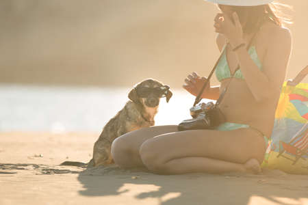 Young woman playing with dog pet on beach during sunrise or sunset.Girl and dog having fun on seaside.Cute neglected stay dog adopted by caring woman.Dog wearing sunglasses.Funny animal