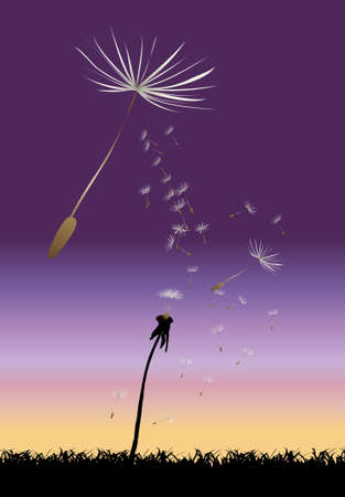 Dandelion, floral background with place for your text,  illustration Stock Vector - 7454043