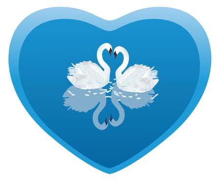 cisnes: Swan Heart, dos cisnes en forma de tarjeta del d�a de San Valent�n del coraz�n  Vectores