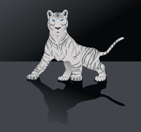 White Bengal tiger Vector