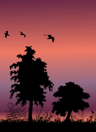 land development: tree silhouette background and birds flying, with place for your text