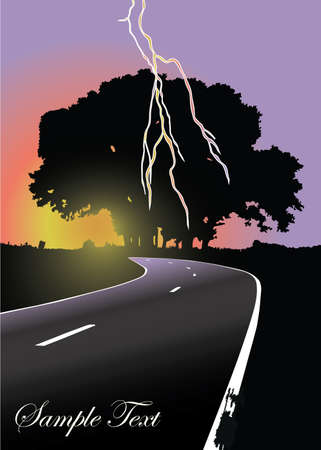 Silhouet van de boom op de weg