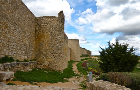 Castle wall surrounded by nature under a beautiful blue sky. Stock Photo - 11000489