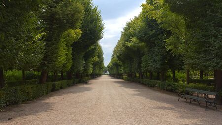 nbrunn: Vienna, Austria, July 23, 2011 - Alley of trees in the imperial garden of Schoenbrunn Palace on a sunny day