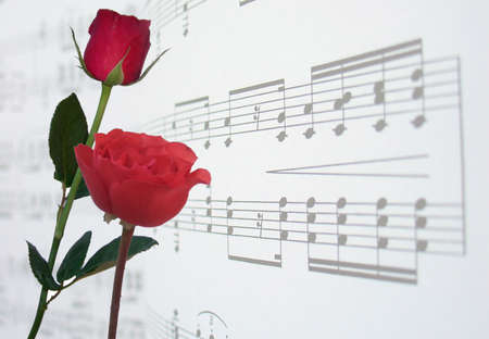 semibreve: red roses and music