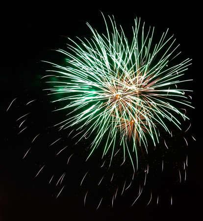 Fireworks exploding against night sky