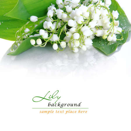 mayflower: lily of the valley