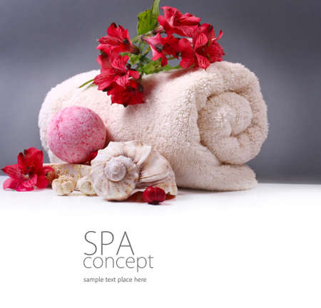 Spa background  Stock Photo - 13167185